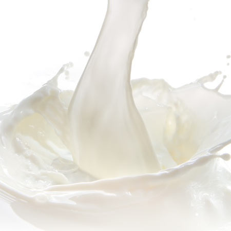 milk fresh: pouring milk splash isolated on white background