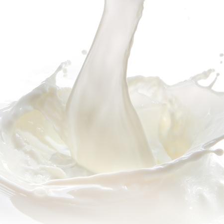 milk milk products: salpicaduras de verter la leche sobre fondo blanco