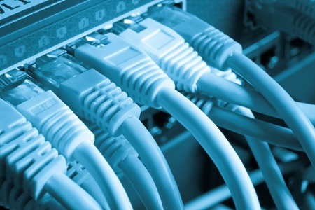close up of network cables connected to switch Stock Photo - 13140014