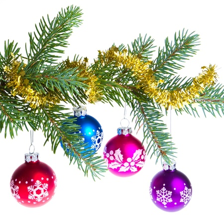 decorated christmas branch isolated on white background Stock Photo - 13815337