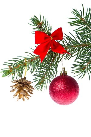 red christmas tree ball hanging from spruce isolated on white background