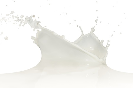 splashing milk isolated on white background photo