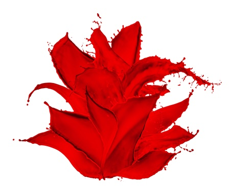 flower made of red paint splashes, isolated photo