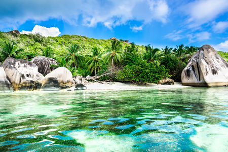 anse source d argent: tropical beach with palm leaves
