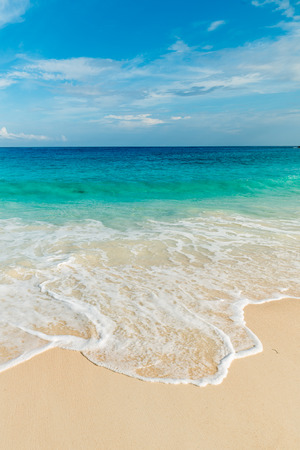 turquoise water: tropical beach with turquoise water Stock Photo