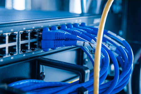 blue patch cables connected to ethernet ports of the switch