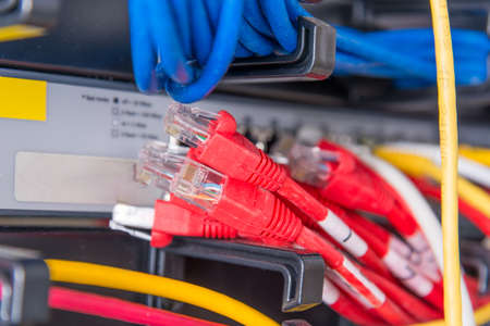 red patch cables connected to    ports of the switch