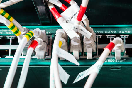 colorful patch cables connected to switch - high speed internet concept 版權商用圖片