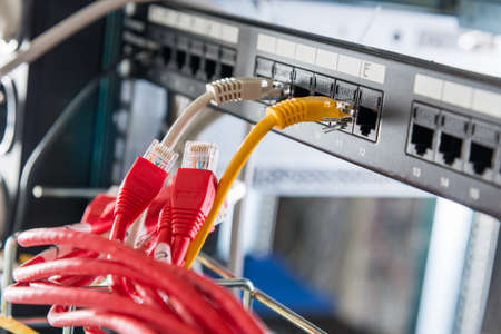 red patch cables to be connected to ports of the switch