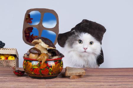 キノコのマリネを食べるロシアの帽子の中の猫