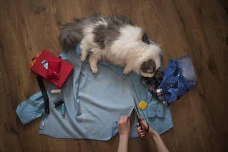 少女は古いシャツから猫の服を縫う