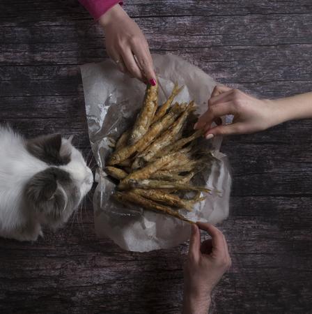 家族と猫を食べる魚のフライ