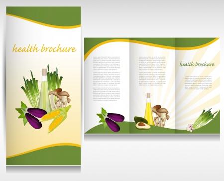 Health food brochure design  Bio vegetable and fruit  Brochure folder vector