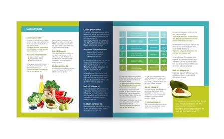 carpetas: Página de folletos. Diseño de la revista de la infografía. Diseño de folletos con productos naturales. Vectores