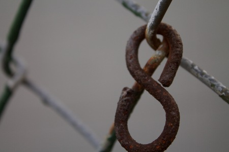 chain link fence: Chain Link Fence