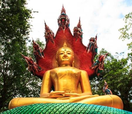 hunker: Golden Bhuddha sat under a snake with seven heads