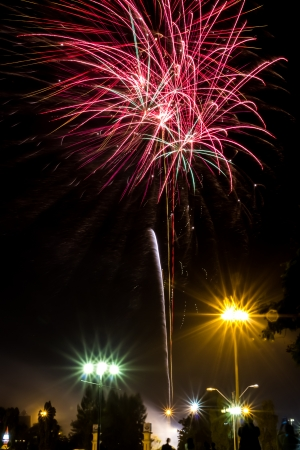 whizz: The wonderful firework in new year celebration
