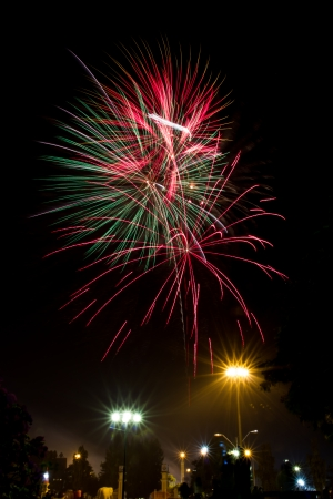 The wonderful firework in new year celebration  photo