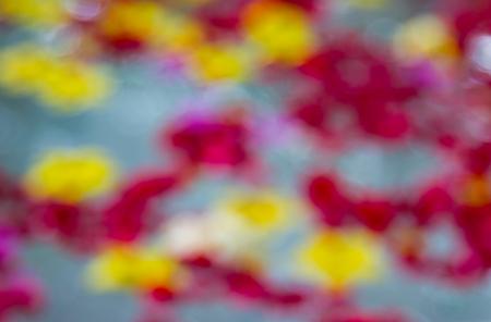 adentro y afuera: Las flores flotando en el agua en fuera de foco. Foto de archivo