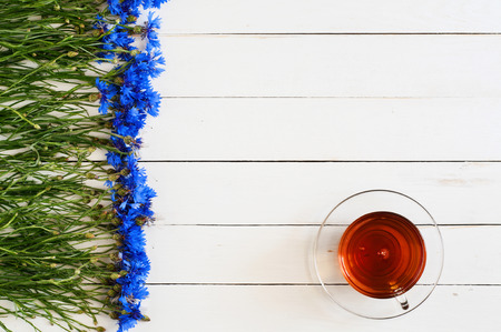 centaurea: Beautiful blue flowers of the field on a white wooden table with a cup of black tea. Background. top view