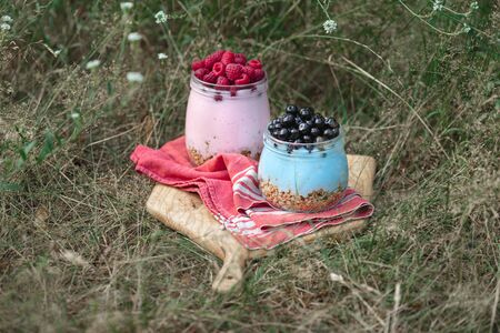 Granola yogurt with homemade blueberry and raspberry in glass jar in grass