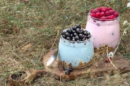 Healthy food breakfast. Granola yogurt with homemade blueberry and raspberry in glass jar in grass Archivio Fotografico