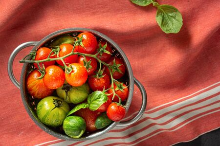 Set of different fresh washed homemade tomatoes with basil leaves in a sieve Stock Photo