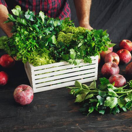 Farmer with freshly picked herbs in wooden box garvesting concept