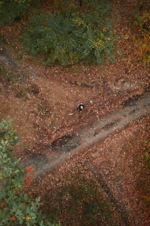 Young woman with spread hands in the autumn forest aerial drone view