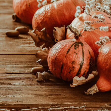 Pumpkins with dry leaf and acorns Autumn background