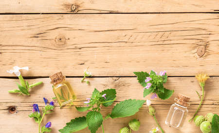 Various plants, leaves of healing herbs and healthy oils on wooden background top view. Alternative medicine background