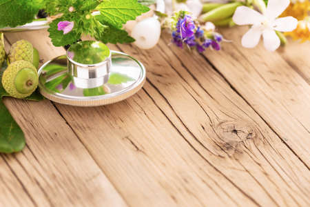 Alternative medicine. Stethoscope with various plants, leaves of healing herbs and healthy oils on wooden table with copy space