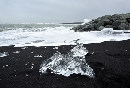 ice sculpture: A natural animal ice sculpture on a beach near Jokulsarlon volcano in Iceland. It looks like some sort of little dog or cat. The crystal clear ice looks great against the black volcano sand.