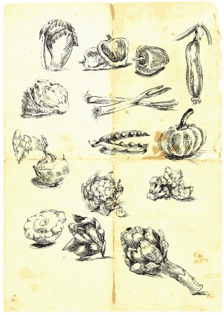 손 계절 과일과 야채의 큰 컬렉션을 그려 일러스트