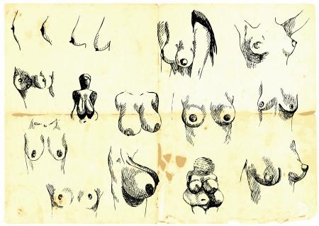 Hand-, die Sammlung weibliche Brust