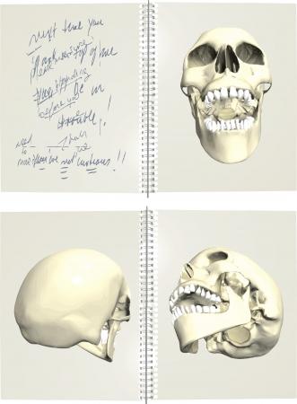 hamlet: Series of human skulls