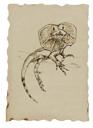 Basilisks lizard Stock Vector - 14466101