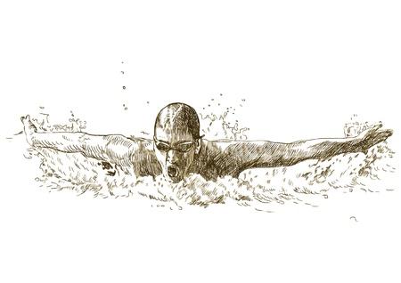 nuoto: Swimmer, stile farfalla - disegno a mano convertito in vettore Vettoriali
