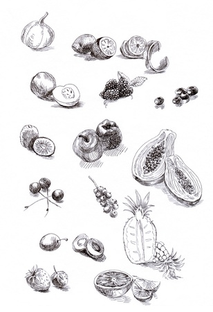 freehand: fruits and vegetables, collection - sketches, hand drawing, black marker