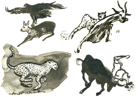 academic touch: animals   water colors technique