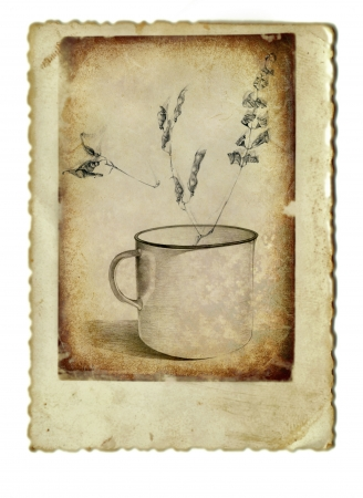 hand drawing and vintage processing - mug and herbs photo