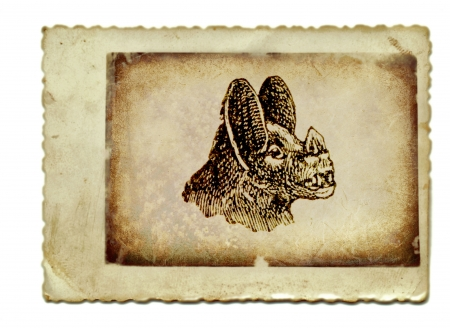 archaically: hand drawing, vintage processing - the bat