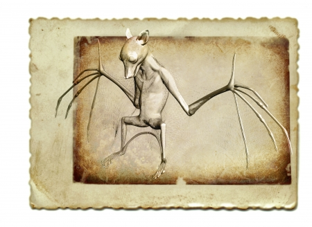 vintage collage with 3D render, bat photo