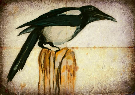 magpie: hand painting, magpie