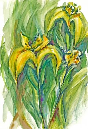 archaically: painting - iris