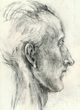 academic touch: head - drawing