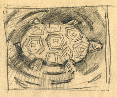archaically: turtle - pencil technique, drawing