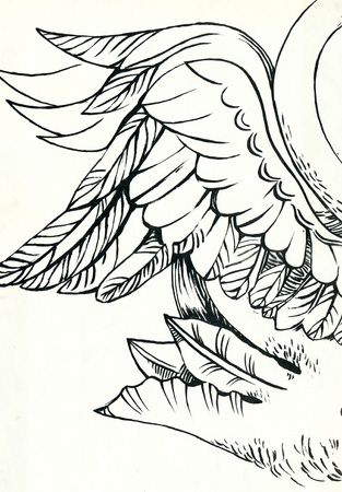 academic touch: angel wings - drawing, sketch