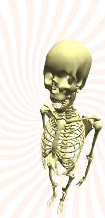 dismay: Illustration of a human skeleton shaded, realistic approach Illustration
