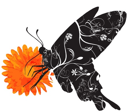 butterfly Stock Vector - 15761889
